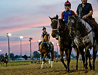 LOUISVILLE, KY - MAY 02: Horses walk onto the track for morning workouts in Preparation for the Kentucky Derby and Oaks at Churchill Downs on May 2, 2018 in Louisville, Kentucky. (Photo by Scott Serio/Eclipse Sportswire/Getty Images)