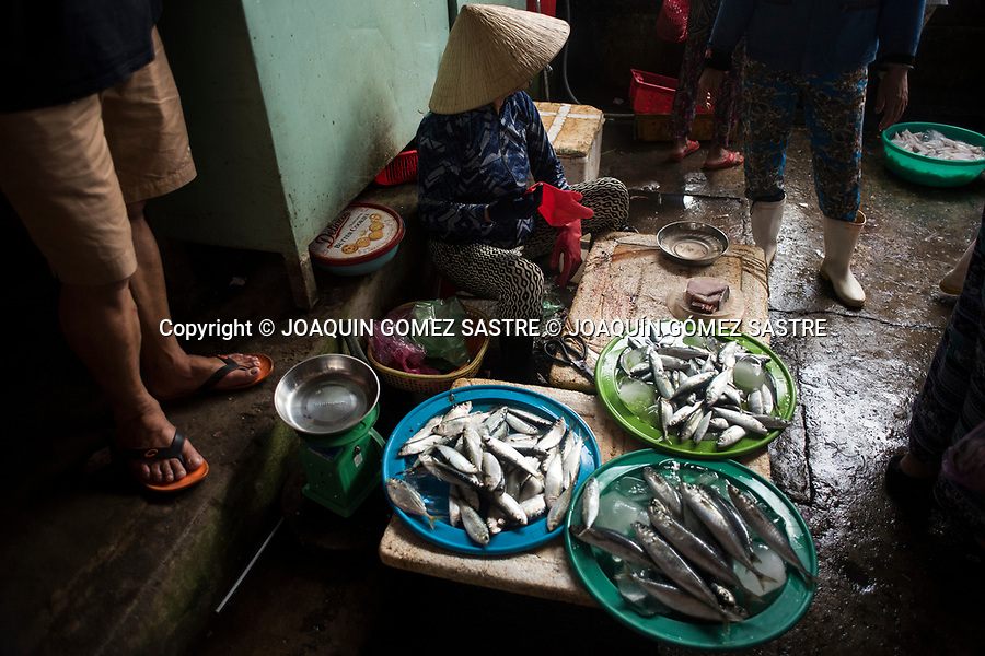 There are multitude of corners where they sell their products in this case fish in the market of Hoian (Vietnam)<br /> HOIAN-VIETNAM