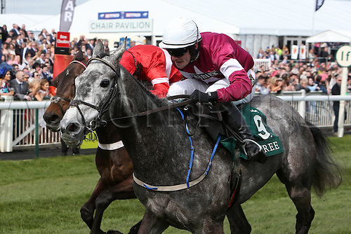 08.04.2016. Aintree, Liverpool, England. Crabbies Grand National Festival Day 2.Petit Mouchoir ridden by David Mullins on the last furlong
