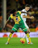 Dieumerci Mbokani of Norwich City and Federico Fernandez of Swansea City during the Barclays Premier League match between Norwich City and Swansea City played at Carrow Road, Norwich on November 7th 2015