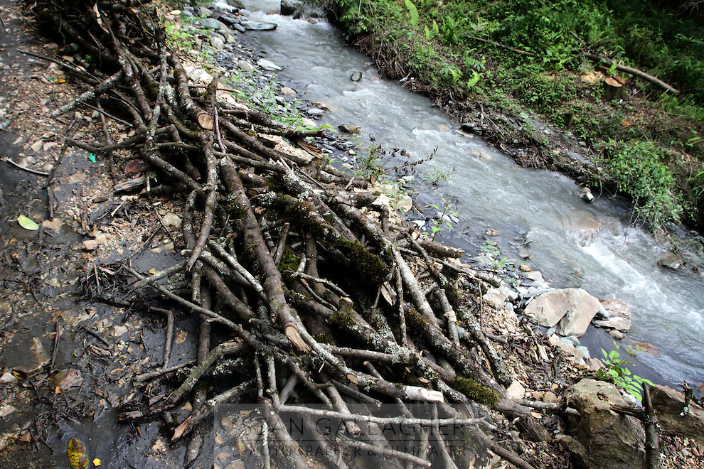 Piles of wood lie next to a small stream running through the forests of northern Sichuan. Many locals from mountainous rural communities still rely on harvesting wood from the forests for heating and cooking.  Pingwu County in Sichuan Province, south-west China.