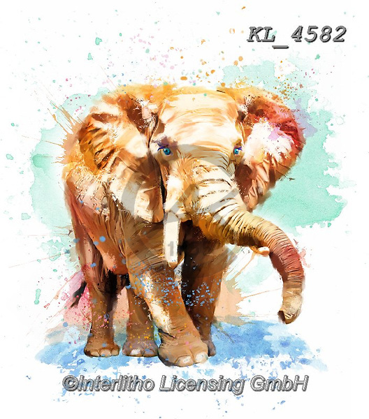 Interlitho-Isabella, REALISTIC ANIMALS, REALISTISCHE TIERE, ANIMALES REALISTICOS, paintings+++++,elephant,KL4582,#a#, EVERYDAY