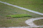 11.03.2019, Merkur Spielarena, Duesseldorf , GER, 1. FBL,  Fortuna Duesseldorf vs. Eintracht Frankfurt,<br />  <br /> DFL regulations prohibit any use of photographs as image sequences and/or quasi-video<br /> <br /> im Bild / picture shows: <br /> beschgaedigter Rasen vor dem Eckpunkt <br /> <br /> Foto &copy; nordphoto / Meuter