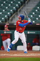 Buffalo Bisons Billy McKinney (11) at bat during an International League game against the Scranton/Wilkes-Barre RailRiders on June 5, 2019 at Sahlen Field in Buffalo, New York.  Scranton defeated Buffalo 4-0, the second game of a doubleheader. (Mike Janes/Four Seam Images)