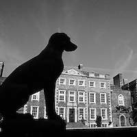 English Manor with Silhouetted Dog Statue