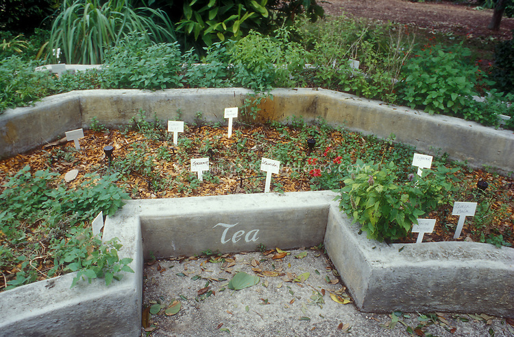 Herb garden for teas, in raised tiered beds, with plant label signs handwritten, includes mints, lavender, catnip, lemon balm, anise hyssop