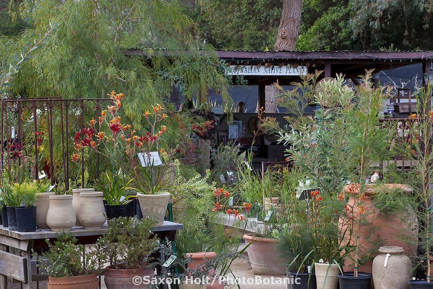 Nursery entrance, Australian Native Plant Nursery, Ventura, California