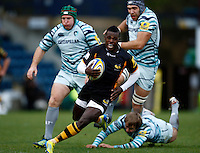 Wasps v Tigers 20121125