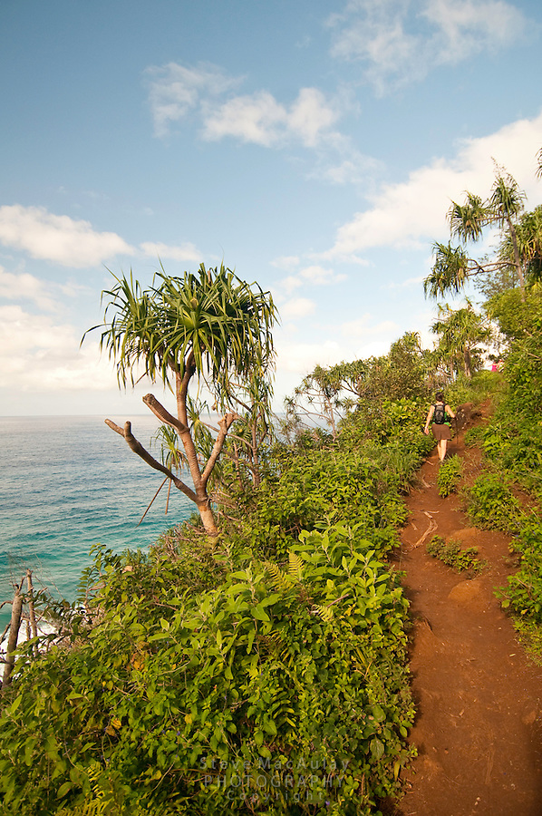 Hiking the Kalalau Trail along the Napali Coast, Northshore, Kauai, Hawaii