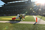 Nov 21, 2015; Eugene, OR, USA; The Duck makes push-ups after a Ducks' touchdown against the USC Trojans at Autzen Stadium. <br /> Photo by Jaime Valdez