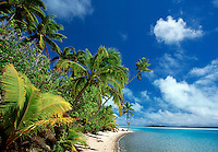 Palm trees and beach One Foot Island near Aitutaki Cook Islands South Pacific.