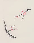 Sakura tree branches with pink cherry blossom flowers beautiful Japanese Zen Sumi-e color ink rice paper painting artwork on natural beige ivory background