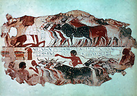 Egyptian Tomb Paintings:  The Cattle Census, c. 1400 BC. Trustees of the British Museum.  Reference only.