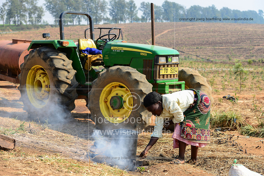 Malawi, Thyolo, Makandi Tea Estate, a fair trade tea plantation, John Deere Tractor, woman cooks tea for the worker