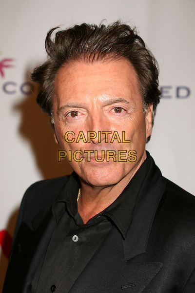 "ARMAND ASSANTE.""Funny Money"" Los Angeles Premiere at the Directors Guild Theatre, West Hollywood, California , USA,.18 January 2007..portrait headshot.CAP/ADM/BP.©Byron Purvis/AdMedia/Capital Pictures."