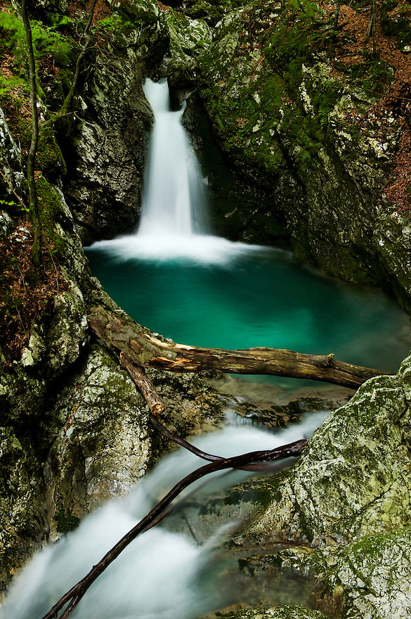 River Lepenjica, cascades<br /> Triglav National Park, Slovenia<br /> July 2009