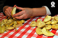 Woman's hand slicing apples on table (Licence this image exclusively with Getty: http://www.gettyimages.com/detail/93187600 )