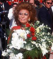 Sophia Loren, 1990, Photo By John Barrett/PHOTOlink