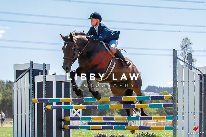 Class 26 Holbrook Farriery & Equestrian Horse 1.05m. 2020 NZL-Fieldline Horse Floats Brookby Showjumping Summer GP Show. Papatoetoe Pony Club. Auckland. Sunday 9 February. Copyright Photo: Libby Law Photography