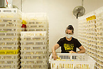 July 24, 2015. Candor, North Carolina.<br />  Quality inspector Dianne Darnell recounts the chicks before they are transported to the facilities where they will mature.<br />  Chicken producer Perdue Farms Inc. has become the first major poultry company to attempt to raise more than half of its flock with no antibiotics, human or for animals only. As demand for meats free of medicines has risen, Perdue has upgraded their facilities to increase cleanliness and sterility to allow the company to cut antibiotics out of the chicken hatching process.