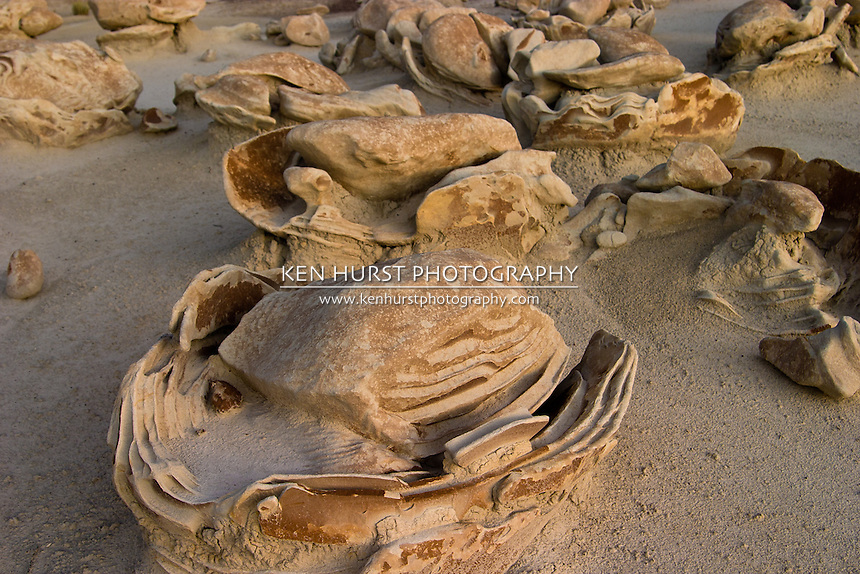 """Very strange rock formations known as the """"dinosaur eggs"""" in the Bisti Wilderness area in northwest New Mexico. Excellent example of the power of erosion."""
