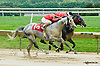 Stormin Monarcho winning The DTHA Governors Day Stakes at Delaware Park on 9/13/14