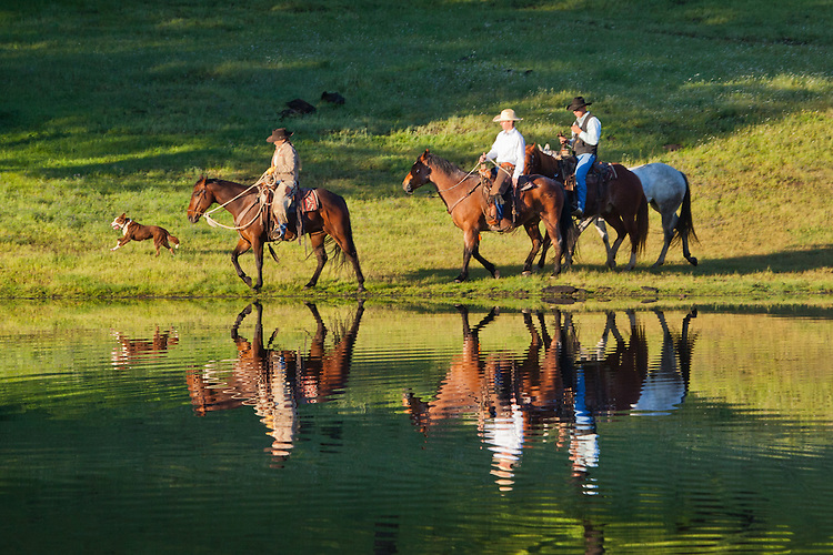 Farm hands riding their horses along a calm pond