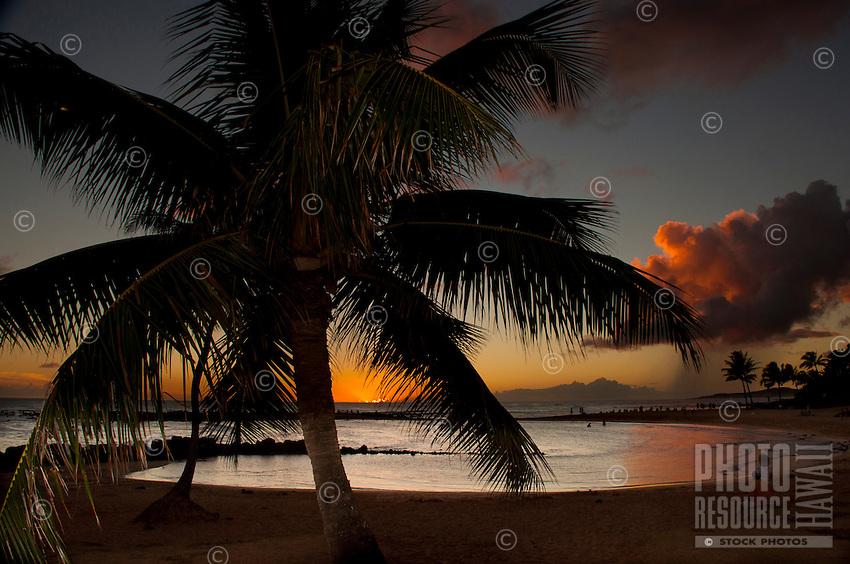 Palm trees and a beautiful sunset at Brennecke's Beach, Poipu, Kauai.