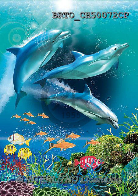Alfredo, REALISTIC ANIMALS, REALISTISCHE TIERE, ANIMALES REALISTICOS, paintings+++++,BRTOCH50072CP,#A# ,dolphins