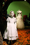 Costumes & Atmosphere at the The celebration of the Blu-ray(TM) & DVD release of Alice in Wonderland on June 1, Walt Disney Studios Home Entertainment (WDSHE), in partnership with Disney Consumer Products (DCP), is unveiling a first-of-its-kind Alice In Wonderland Exhibition in the FIDM Museum & Galleries at FIDM/Fashion Institute of Design & Merchandising in downtown in Los Angeles, California on May 26,2010                                                                   Copyright 2010  DVS / RockinExposures