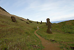 Chile, Easter Island: Sculptures at the quarry Rano Raraku where all the large sculptures were carved..Photo #: ch252-32708.Photo copyright Lee Foster www.fostertravel.com lee@fostertravel.com 510-549-2202