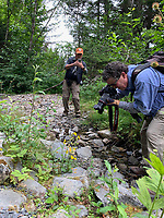 Photographers (David Wimpfheimer with iPhione) on hike to Caine's Head Resurrection Bay on Kenai Peninsula, Pacific Horticulture tour of Alaska