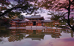 Beautiful sunrise scenery of Byodo-in temple Amida Phoenix hall reflecting in the clear water of the Pure Land garden pond visible through branches of Japanese maple trees. Byodoin, Uji, Kyoto Prefecture, Japan 2017