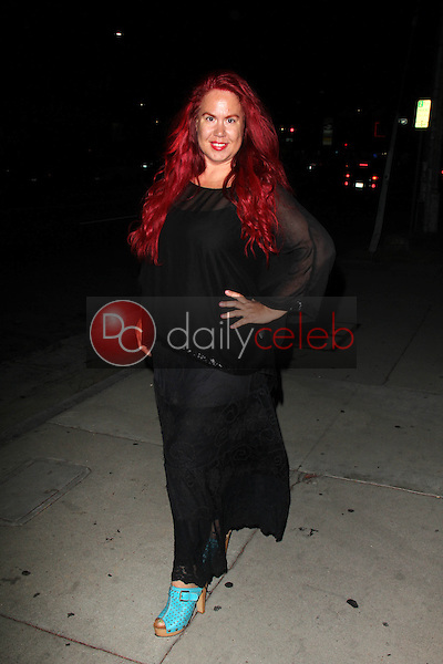 Fileena Bahris<br /> at the &quot;I Wish I Was Here&quot; Los Angeles Premiere, DGA, Los Angeles, CA 06-23-14<br /> David Edwards/DailyCeleb.com 818-249-4998