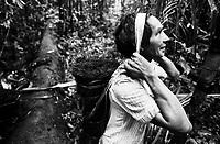 """Índio Werekena, morador da comunidade de Anamoim no alto rio Xié,carrega na cabeça um pacote de piaçaba  chamada de      """" piraíba """"  (Leopoldínia píassaba Wall),após cortá-la.  A  árvore que normalmente aloja os mais variados tipos de insetos representando um grande risco aos índios durante sua coleta . A fibra  um dos principais produtos geradores de renda na região é  coletada de forma rudimentar. Até hoje é utilizada na fabricação de cordas para embarcações, chapéus, artesanato e principalmente vassouras, que são vendidas em várias regiões do país.<br />Alto rio Xié, fronteira do Brasil com a Colômbia a cerca de 1.000Km oeste de Manaus.<br />06/06/2002.<br />Foto: Paulo Santos/Interfoto Expedição Werekena do Xié<br /> <br /> Os índios Baré e Werekena (ou Warekena) vivem principalmente ao longo do Rio Xié e alto curso do Rio Negro, para onde grande parte deles migrou compulsoriamente em razão do contato com os não-índios, cuja história foi marcada pela violência e a exploração do trabalho extrativista. Oriundos da família lingüística aruak, hoje falam uma língua franca, o nheengatu, difundida pelos carmelitas no período colonial. Integram a área cultural conhecida como Noroeste Amazônico. (ISA)"""