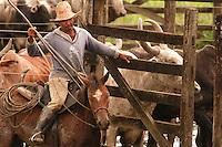 Vaqueiro, fazenda Tuiuiu.<br /> Cachoeira do Arari, Pará, Brasil.<br /> 08/05/2006<br /> Foto Paulo Santos/Interfoto