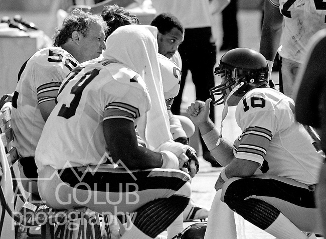San Francisco 49ers vs. Pittsburgh Steelers at Candlestick Park Sunday, October 14, 1984..Steelers beat the 49ers 20-17.Pittsburgh Steelers Center Mike Webster (52) and Pittsburgh Steelers Quarterback Mark Malone (16) talk on sidelines...