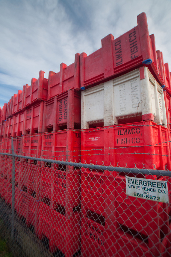 Packing Crates at Jessie's Ilwaco Fish Co., Ilwaco, Washington, US