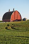 Red arch-roof barn, ventilators, Washington's Palouse.