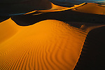 Namibia;  Namib Desert, Namib-Naukluft National Park, red sand dunes near Sossusvlei, sunset