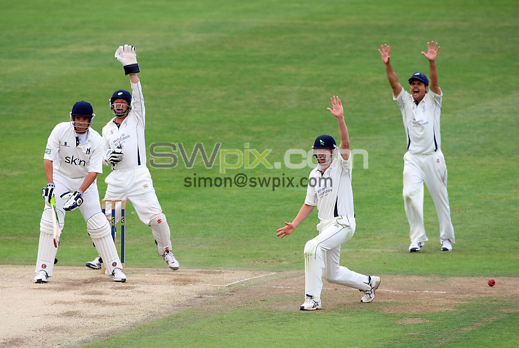PICTURE BY VAUGHN RIDLEY/SWPIX.COM - Cricket - County Championship - Yorkshire v Warwickshire, Day 4 - Headingley, Leeds, England - 08/07/10...Copyright - Simon Wilkinson - 07811267706...Yorkshire successfully appeal the wicket of Warwickshire's Neil Carter off the bowling of Adil Rashid.