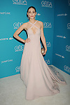 17th Costume Designers Guild Awards 2-17-15