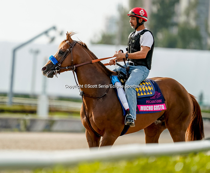January 24, 2020: Mucho Gusto jogs as horses prepare for the Pegasus World Cup Invitational at Gulfstream Park Race Track in Hallandale Beach, Florida. Scott Serio/Eclipse Sportswire/CSM