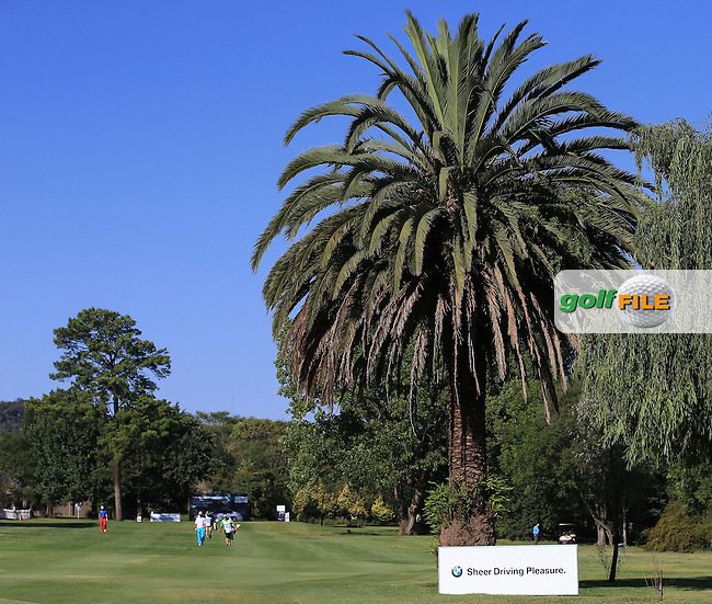 View down the 17th fairway during the completion of Round Two of the 2016 BMW SA Open hosted by City of Ekurhuleni, played at the Glendower Golf Club, Gauteng, Johannesburg, South Africa.  09/01/2016. Picture: Golffile | David Lloyd<br /> <br /> All photos usage must carry mandatory copyright credit (&copy; Golffile | David Lloyd)