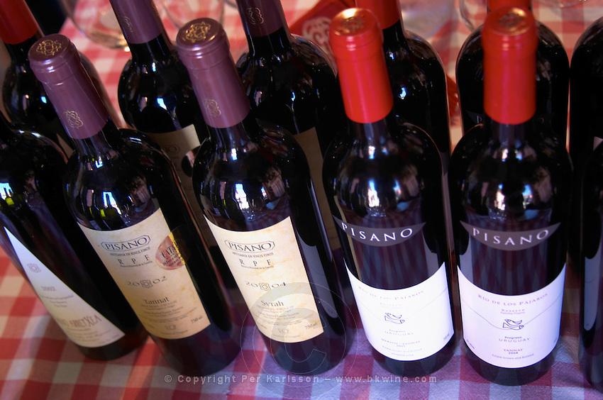 Several different bottles of Pisano wines on the tasting table. Bodega Pisano Winery, Progreso, Uruguay, South America