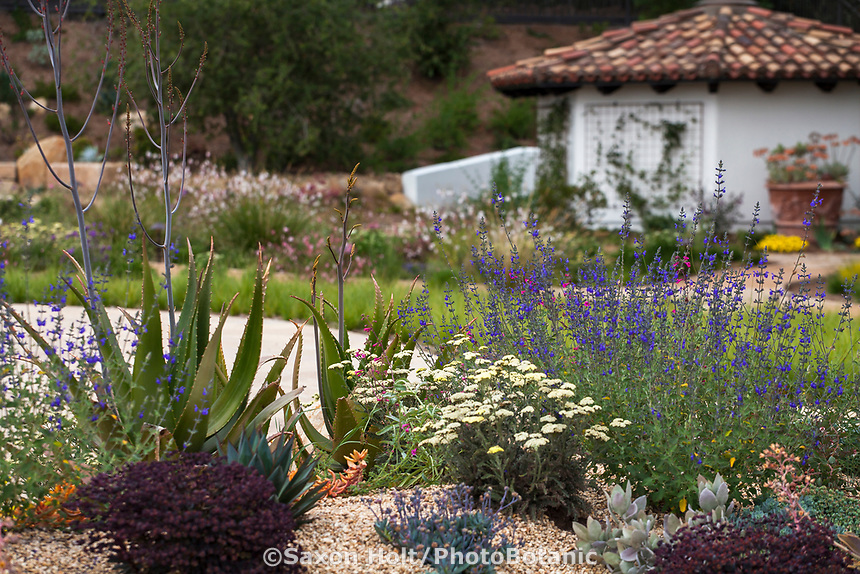 Summer-dry garden perennial border using water capture irrigation from on site cistern; design Urban Water Group, Los Angeles