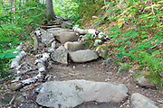 Stone staircase along Valley Way in the New Hampshire White Mountains during the summer months. Dead trees have been placed on the side of the steps to prevent hikers from creating herd paths around the steps.