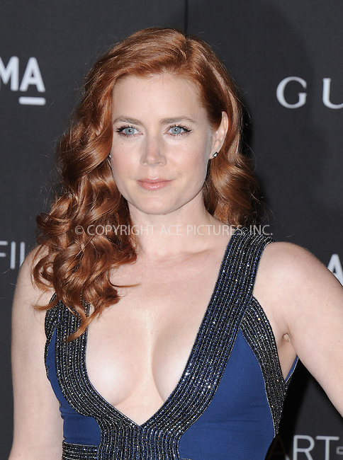 ACEPIXS.COM<br /> <br /> November 1 2014, LA<br /> <br /> Amy Adams arriving at the 2014 LACMA Art + Film Gala honoring film director Quentin Tarantino and artist Barbara Kruger on November 1, 2014 in LA.<br /> <br /> By Line: Peter West/ACE Pictures<br /> <br /> ACE Pictures, Inc.<br /> www.acepixs.com<br /> Email: info@acepixs.com<br /> Tel: 646 769 0430