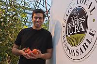 Amérique/Amérique du Nord/Canada/Québec/Montréal: Mohamed Hage  cueille ses tomates dans sa ferme Lufa Farms Inc: il produit seize variétés de tomates,  salades , légumes dans les conditions du bio. Lufa Farms Inc dans  un quartier excentré de Montréal: Ahuntsic Cartierville [Non destiné à un usage publicitaire - Not intended for an advertising use]
