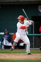 Harrisburg Senators catcher Taylor Gushue (36) at bat during the first game of a doubleheader against the New Hampshire Fisher Cats on May 13, 2018 at FNB Field in Harrisburg, Pennsylvania.  New Hampshire defeated Harrisburg 6-1.  (Mike Janes/Four Seam Images)